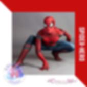 spiderhero.png