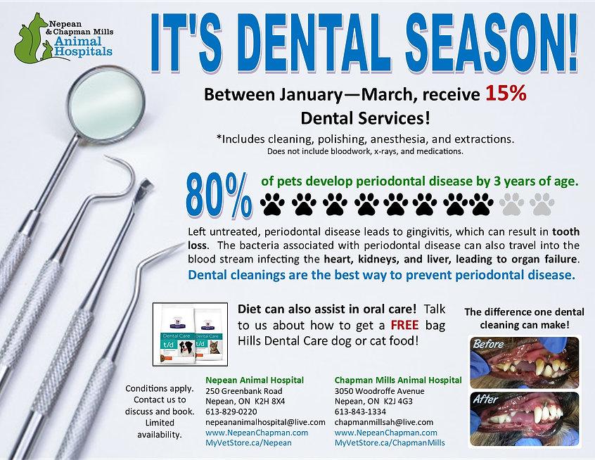Dental Poster - 2021.jpg
