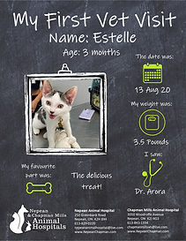 Estelle.jpg