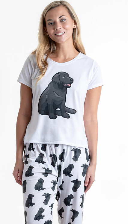 Black labrador w/pants