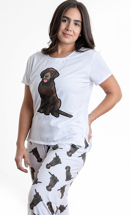 Chocolate labrador w/pants