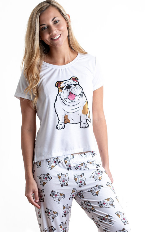 English bulldog 2 w/ pants