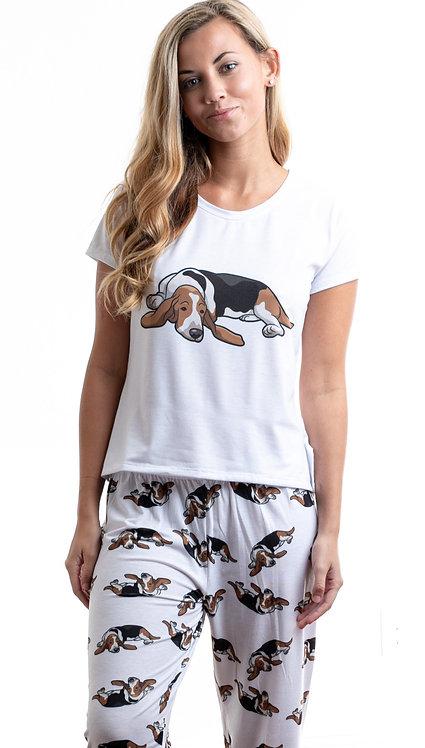 Basset hound w/pants