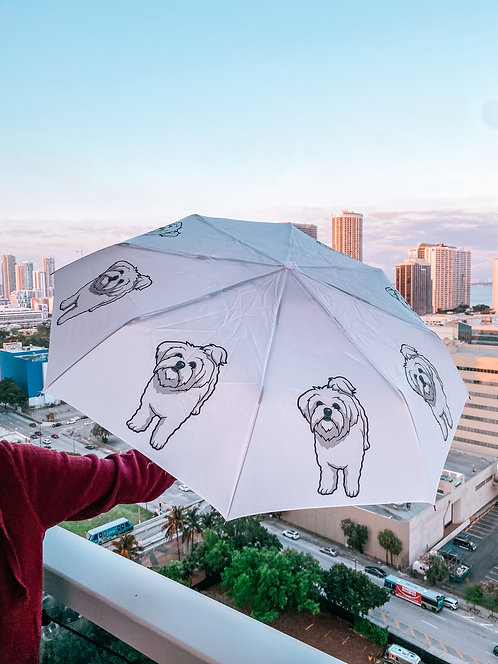 Maltese umbrella