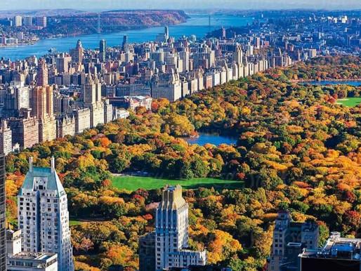 Google comprará edificio de oficinas de Nueva York a Oxford Properties Group por $2.1 mmdd