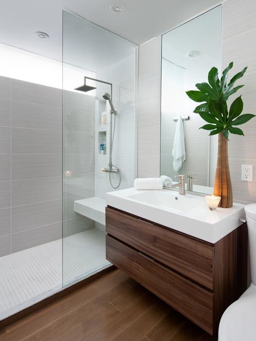 2da1613a02e29682_5842-w500-h666-b0-p0--modern-bathroom.jpg