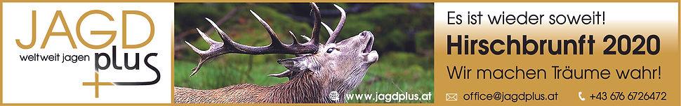 Jagd plus weltweit jagen