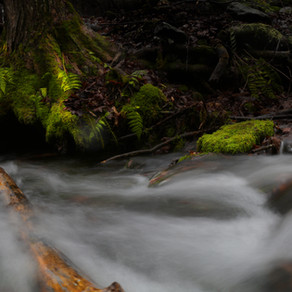 What is shutter speed in photography and how should you use it?