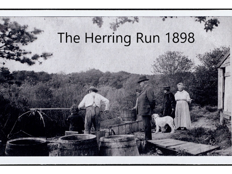 "The ""Oracle of Barnstable Village"" on the history of our herring runs."