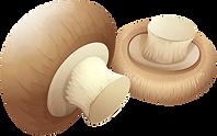 Mushrooms_PNG_Clip_Art.png