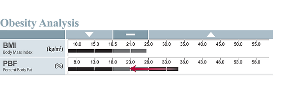 obesity-analysis-lower-bars.png