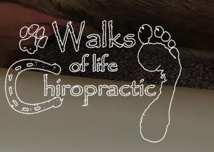 Walks of Life Chiro.jpg