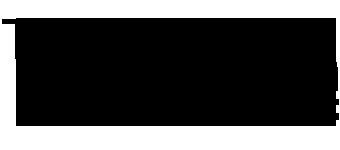 The Junction Internet logo