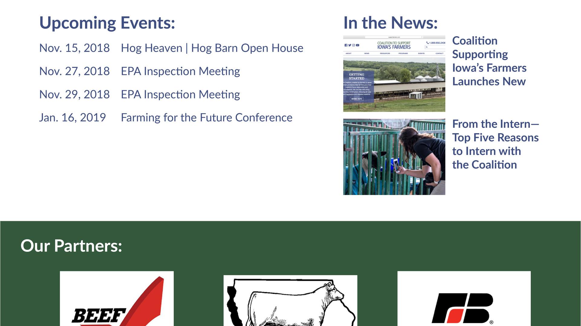 CSIF Website Redesign.jpg