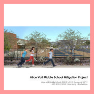 Alice Vail Middle School Mitigation Project