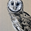 "Thumbnail: ""Finn"" Owl Painting"
