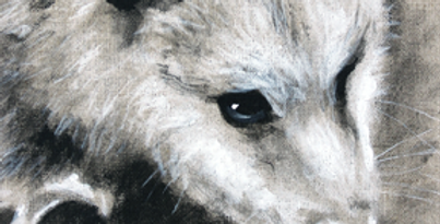 """Darwin"" Acrylic on Linen Painting"