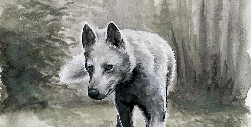 "Watercolor Wolf ""Hugo"""