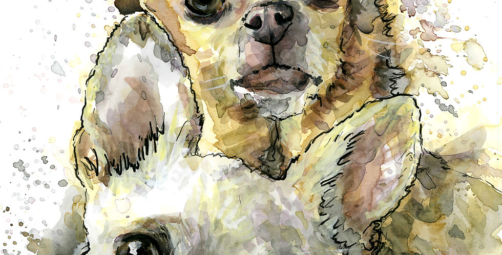 Chihuahua Watercolor Painting