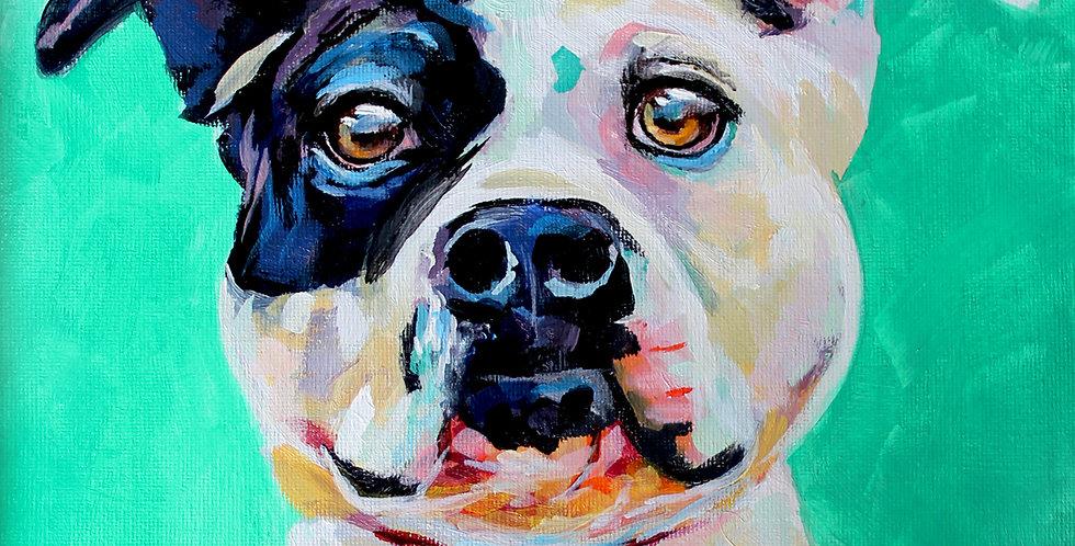 Jumping Bean Pitbull Painting