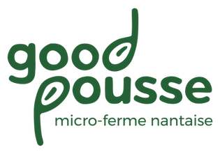 GP_GOODLOGO_RVB-sansbord-02.png