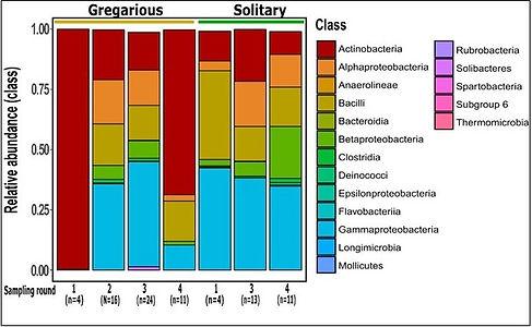 Microbiom.jpg