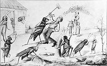 locust fight.jpg