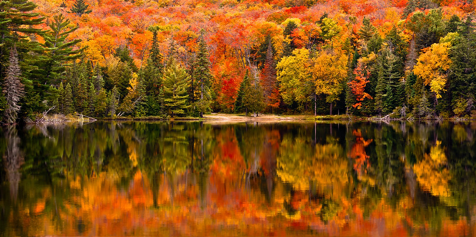 Fall colour reflected in the still water