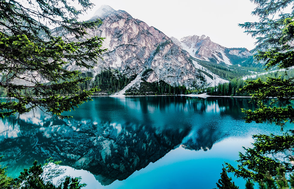 Zoom_daylight-forest-glossy-lake-443446.