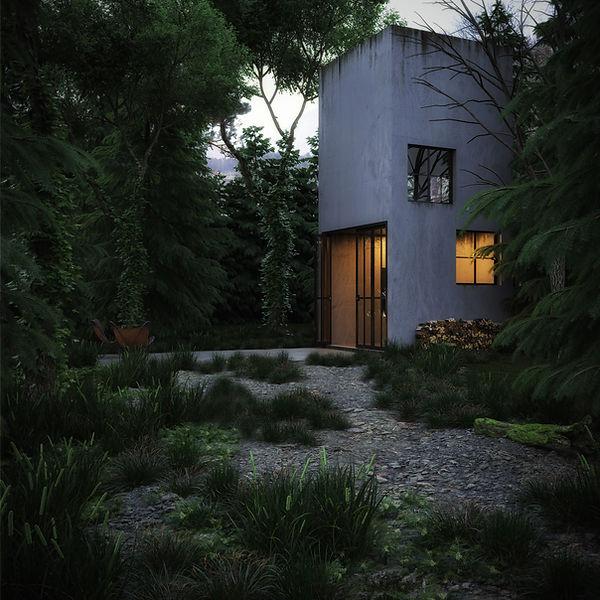 FOREST_TARDE.jpg