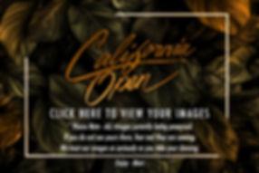 California Open Dancesport Challenge