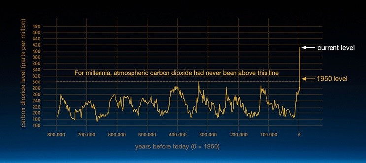 CO2 concentration in the atmosphere for 300,000 years. Sudden rise in the year 1950.