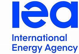 International Energy Agency (IEA) Net Zero by 2050 plan