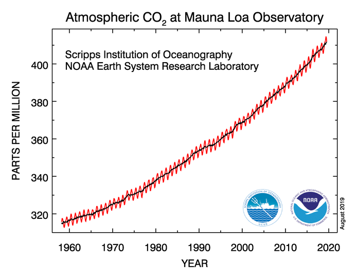 Atmospheric carbon dioxide concentrations measured at the Mauna Loa observatory in Hawaii.