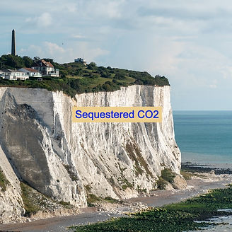 White cliffs of dover carbon sequestration