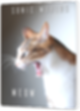 Meow Stanardized Box.png