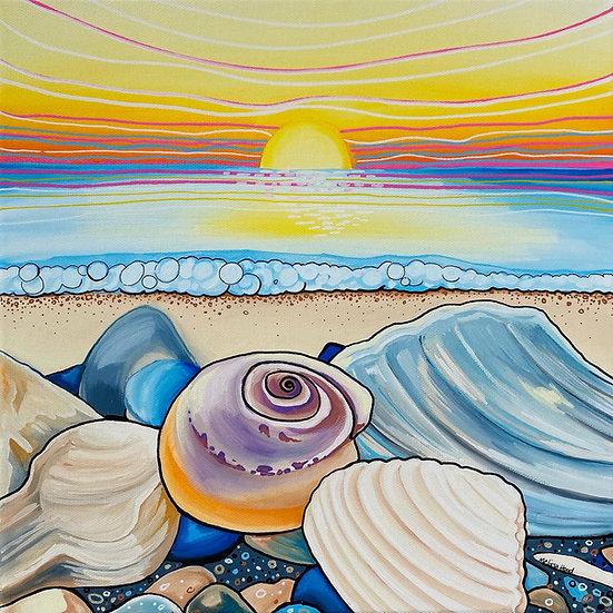 Seashell Sunrise