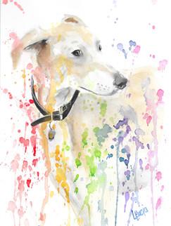 Watercolour Dog