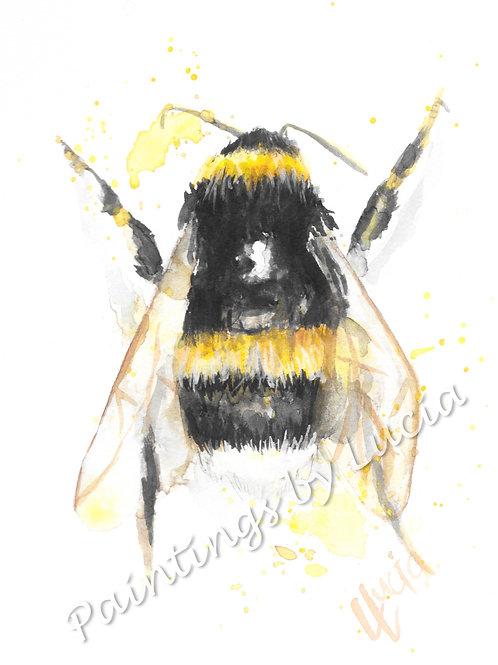 Bee (back)