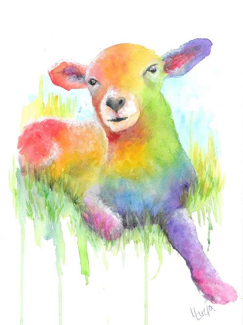 Lamb rainbow