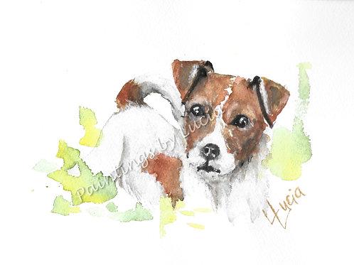 A5 Jack Russell Watercolour Original