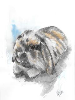 Watercolour Rabbit