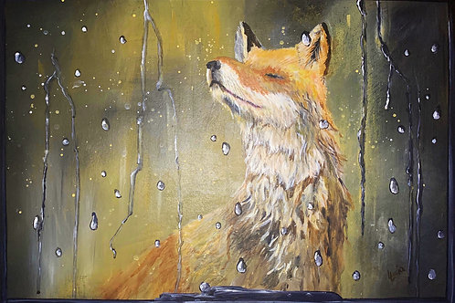 Fox in the rain