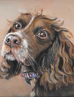 Acrylic Dog