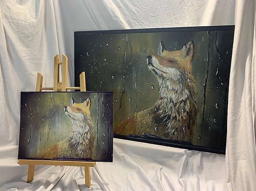 LIMITED EDITION print of Fox in Rain