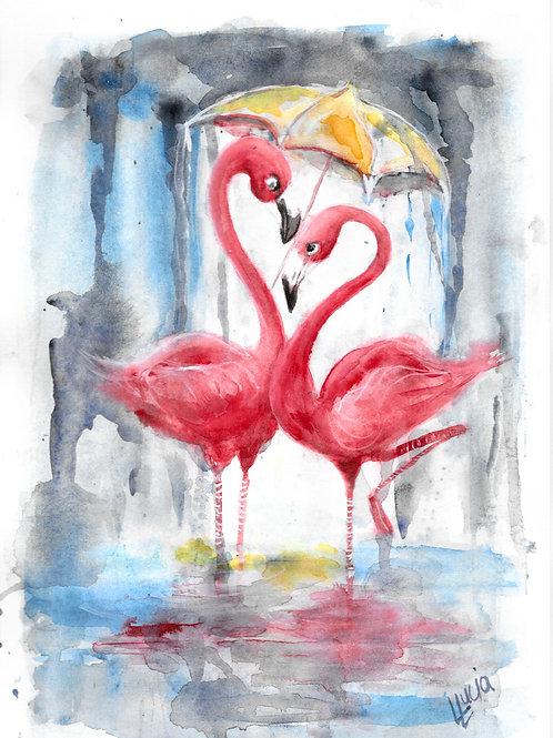 Flamingos in rain