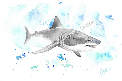 A4 Shark Watercolour Original