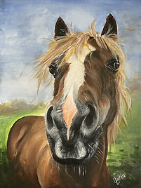 Horse Paintings by Lucia.jpeg
