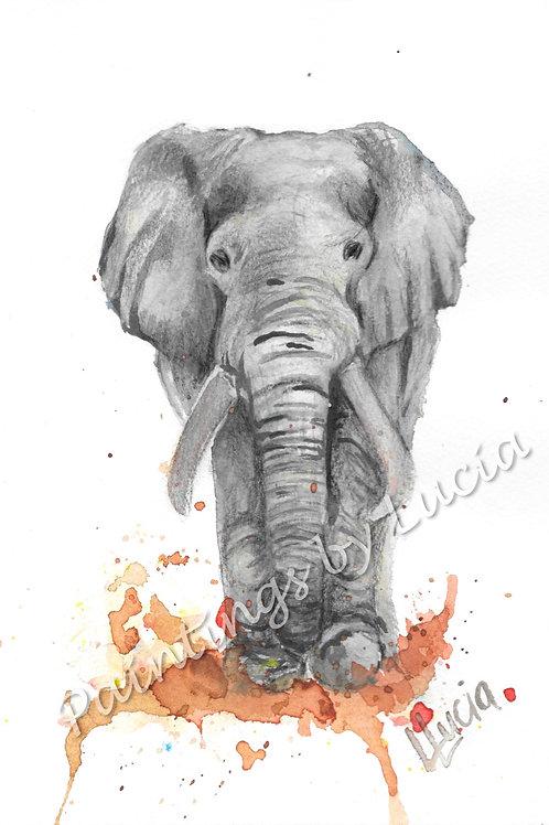 Elephant (single)