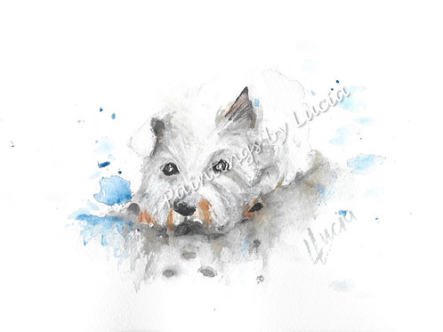 A5 Highland Terrier Watercolour Original